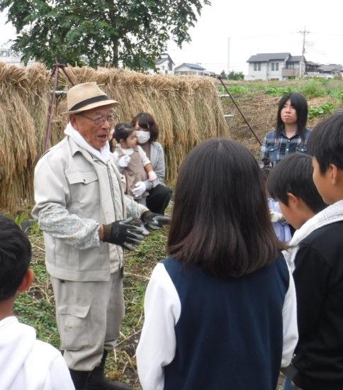 もち米の稲刈り
