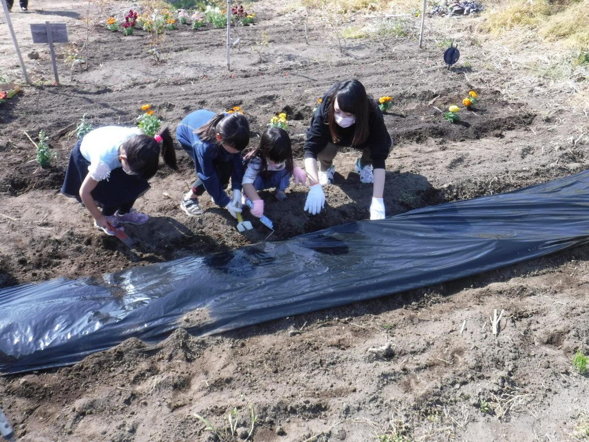 子ども農園