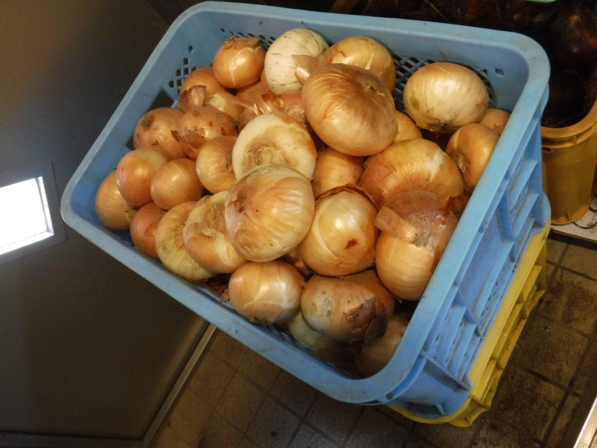 玉ねぎの寄贈を頂きました。
